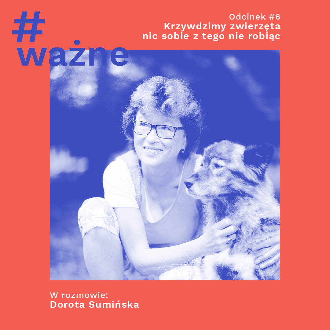 "Odcinek #6: Dorota Sumińska o książce ""Dość"""